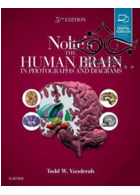 Nolte's The Human Brain in Photographs and Diagrams, 5th Edition2019 مغز انسان در عکسها و نمودارها